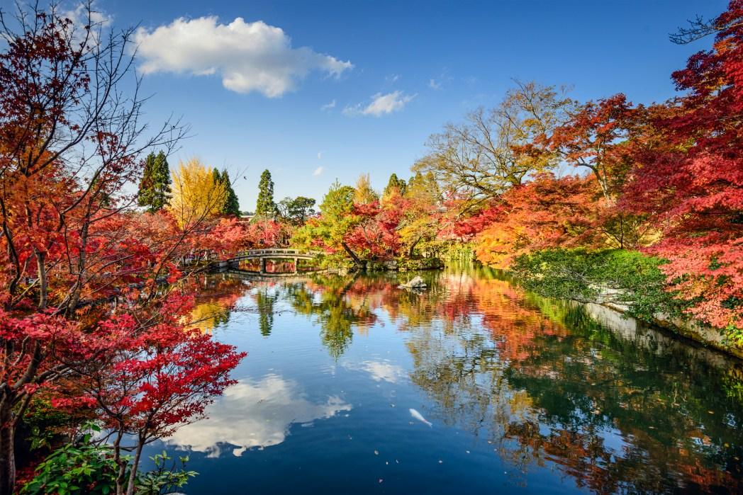 Suasana musim gugur di Kyoto, Jepang